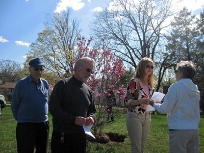 Photo by David Sirota. Cornwall Garden Club's Arbor Day planting of flowering magnolia at Sands-Ring Homestead with Councilman Al Mazzocca, Supervisor Kevin Quigley, and Chairperson Margaret Vatter.