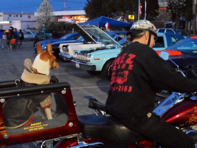 Bill BONEZ of the Bonez Speed Shop in the City of Newburgh, and his ever present dog, came out to the Saturday Night Cruisers Car Club Cruise at the 5 Corners in Vails Gate, on their Harley Motorcycle