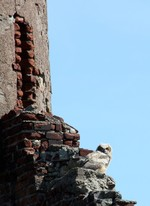 Owl at the arsenal at Bannerman's Island.  Photo by Karen Schaack.