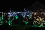 Holiday Lights in Bloom at the County Arboretum.