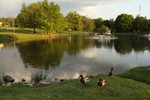 Photo by Maureen Moore. Ring's Pond in May.